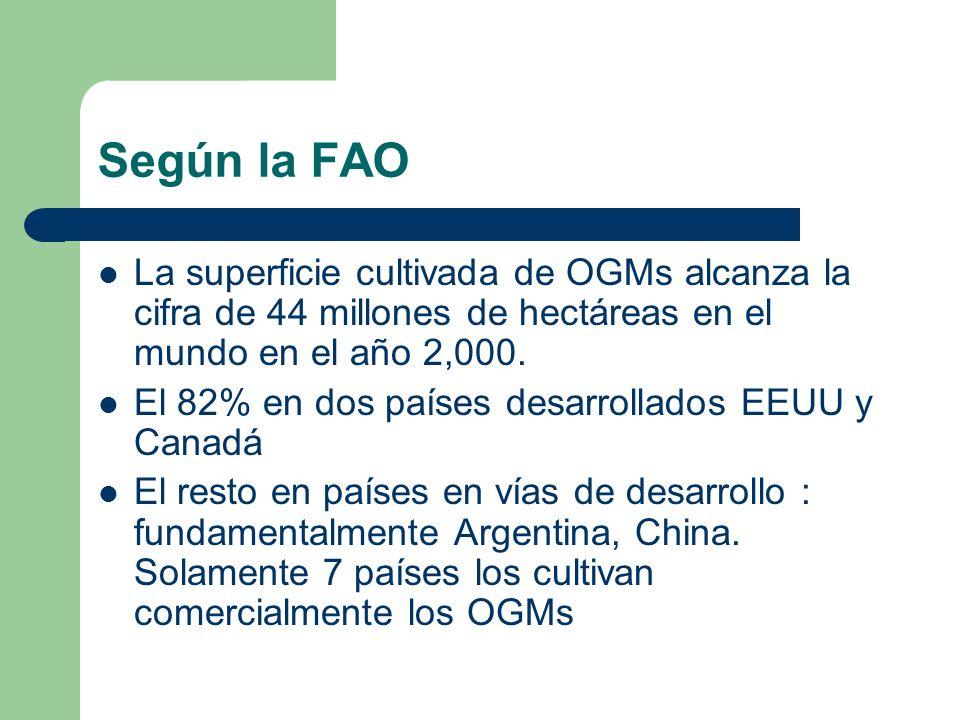 Según la FAO La superficie cultivada de OGMs alcanza la cifra de 44 millones de hectáreas en el mundo en el año 2,000.