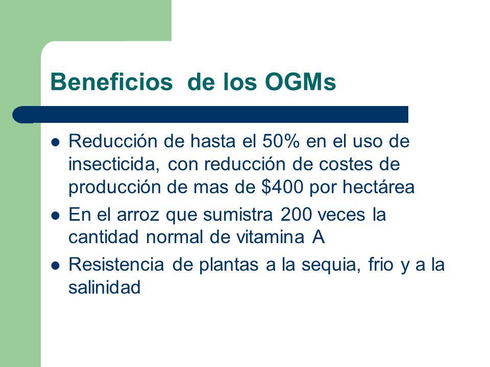 Beneficios de los OGMs Reducción de hasta el 50% en el uso de insecticida, con reducción de costes de producción de mas de $400 por hectárea.