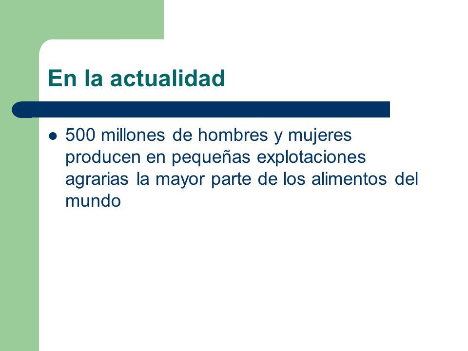 En la actualidad500 millones de hombres y mujeres producen en pequeñas explotaciones agrarias la mayor parte de los alimentos del mundo.