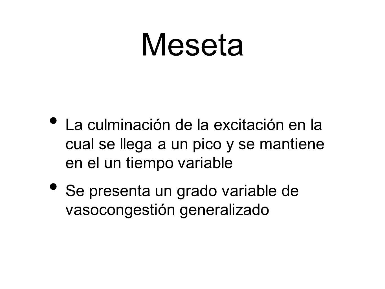 MesetaLa culminación de la excitación en la cual se llega a un pico y se mantiene en el un tiempo variable.