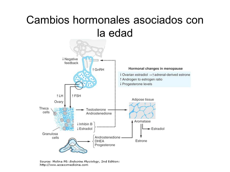 Cambios hormonales asociados con la edad