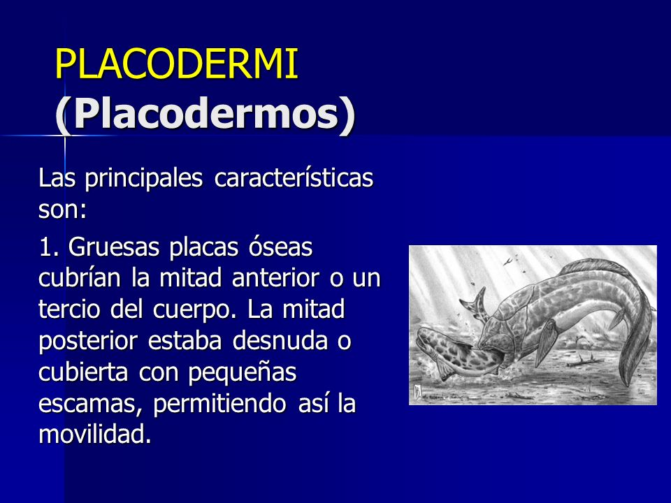 PLACODERMI (Placodermos)