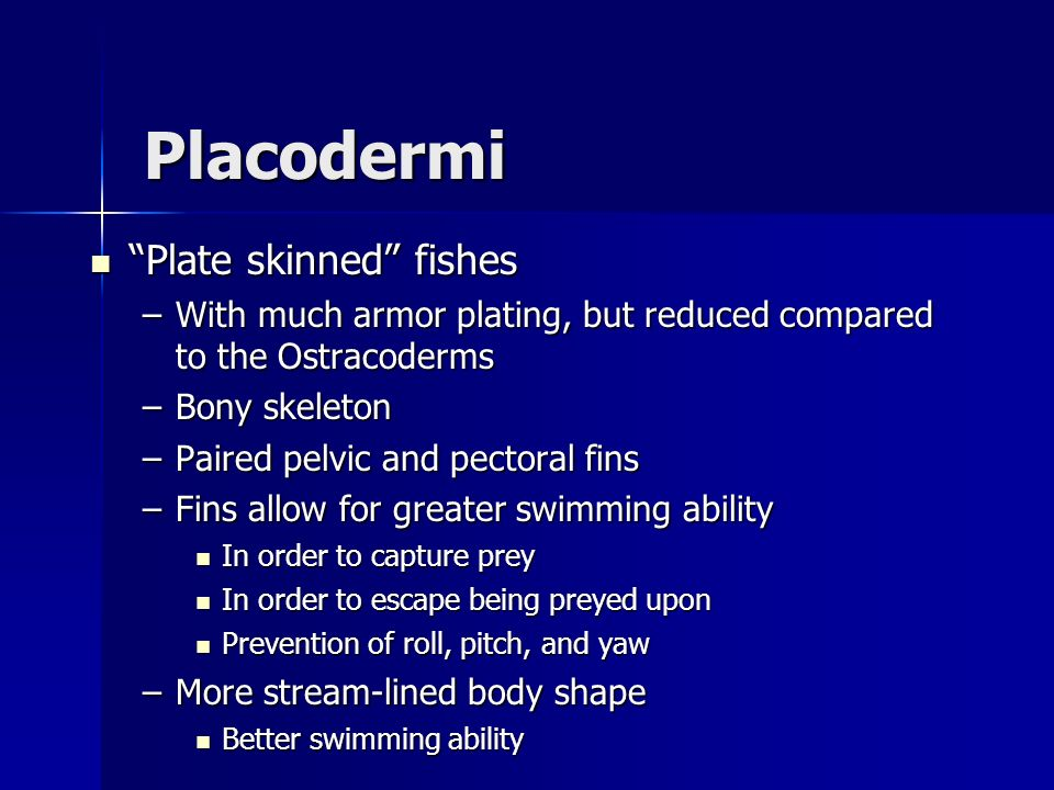 Placodermi Plate skinned fishes