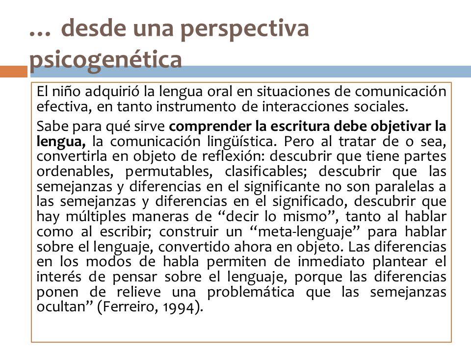 … desde una perspectiva psicogenética