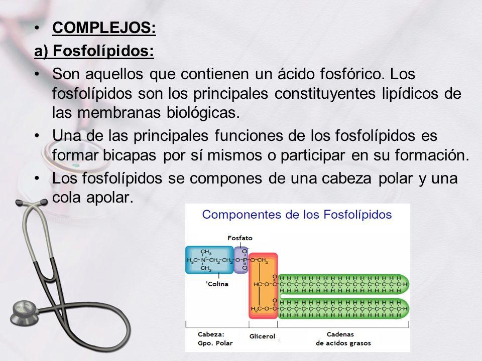 COMPLEJOS:a) Fosfolípidos: