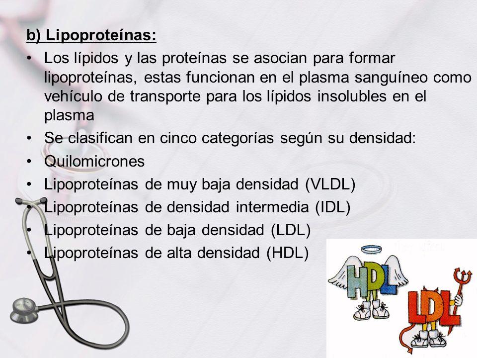 b) Lipoproteínas: