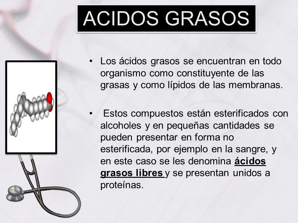ACIDOS GRASOS Los ácidos grasos se encuentran en todo organismo como constituyente de las grasas y como lípidos de las membranas.