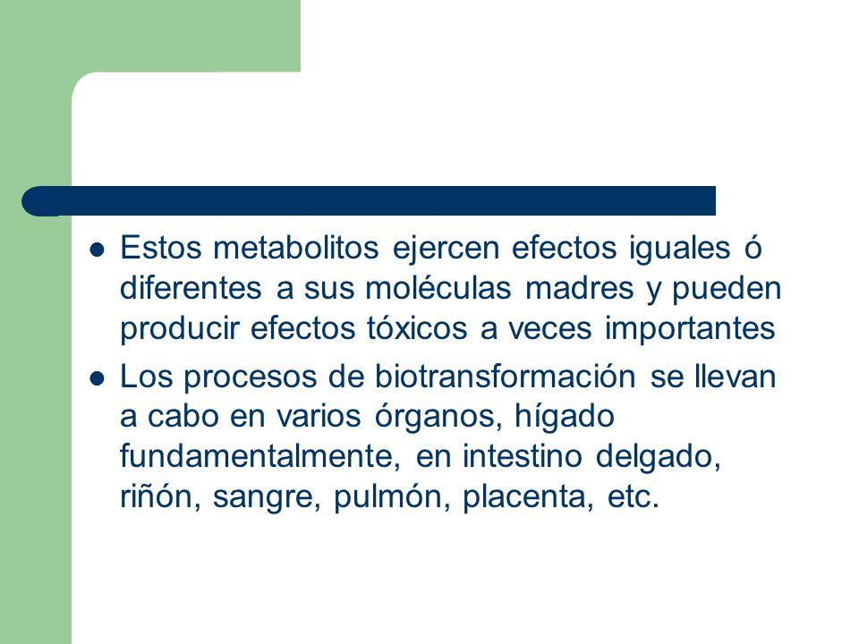 Estos metabolitos ejercen efectos iguales ó diferentes a sus moléculas madres y pueden producir efectos tóxicos a veces importantes
