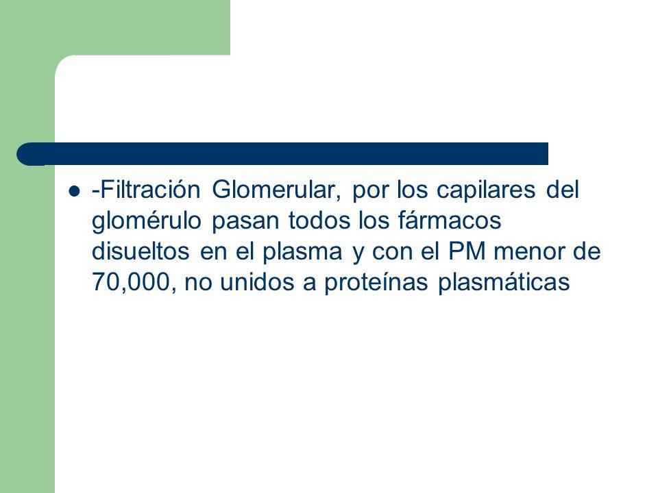 -Filtración Glomerular, por los capilares del glomérulo pasan todos los fármacos disueltos en el plasma y con el PM menor de 70,000, no unidos a proteínas plasmáticas