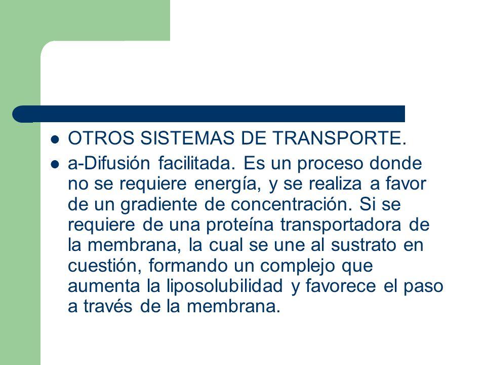 OTROS SISTEMAS DE TRANSPORTE.