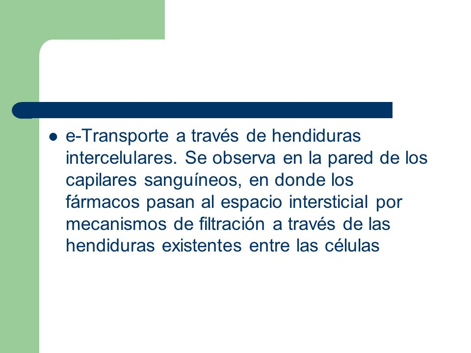 e-Transporte a través de hendiduras intercelulares