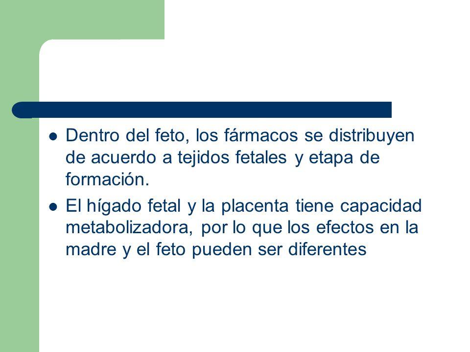 Dentro del feto, los fármacos se distribuyen de acuerdo a tejidos fetales y etapa de formación.