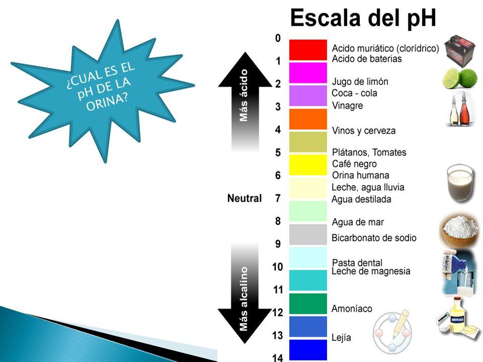 ¿CUAL ES EL pH DE LA ORINA