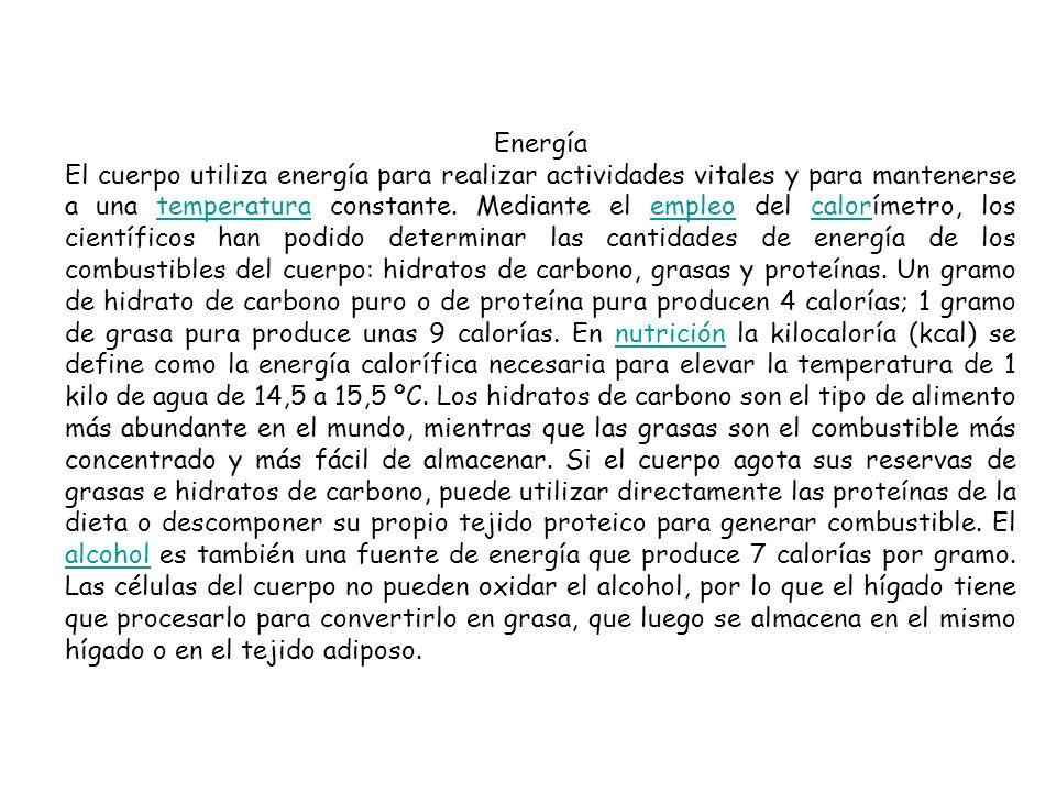 Energía El cuerpo utiliza energía para realizar actividades vitales y para mantenerse a una temperatura constante.