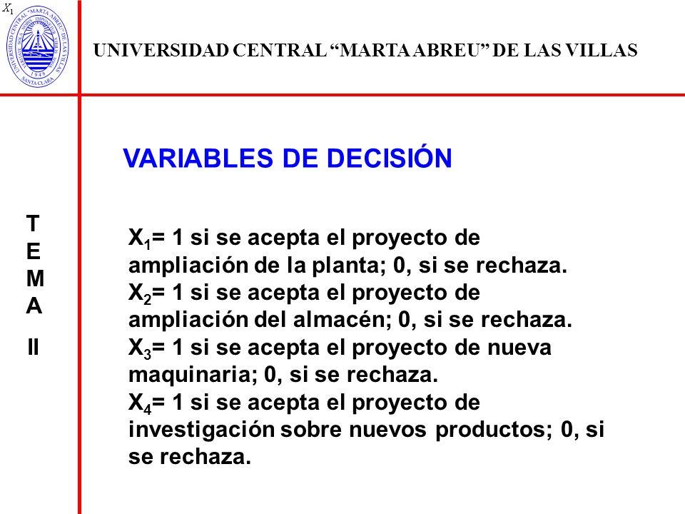 VARIABLES DE DECISIÓN TEMA