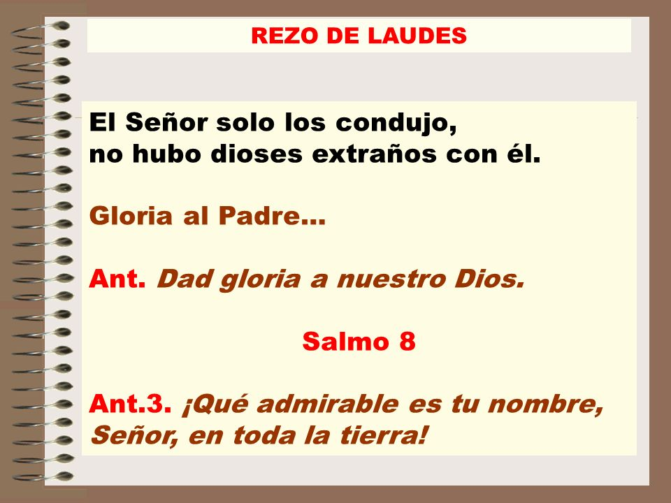 Ant. Dad gloria a nuestro Dios. Salmo 8
