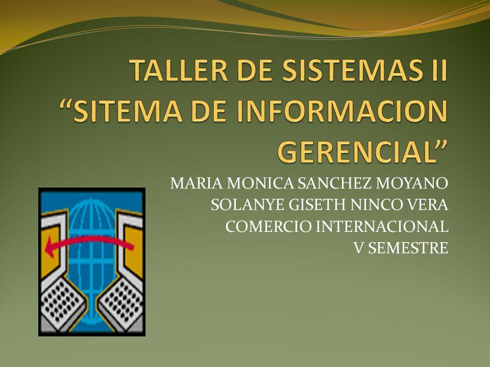 TALLER DE SISTEMAS II SITEMA DE INFORMACION GERENCIAL
