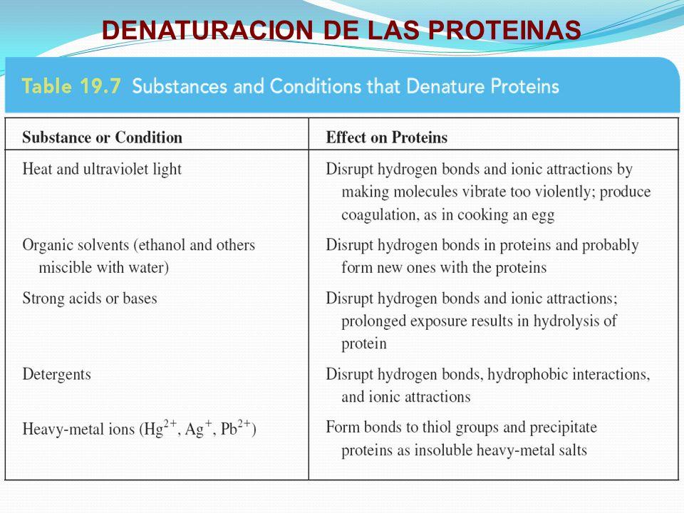 DENATURACION DE LAS PROTEINAS