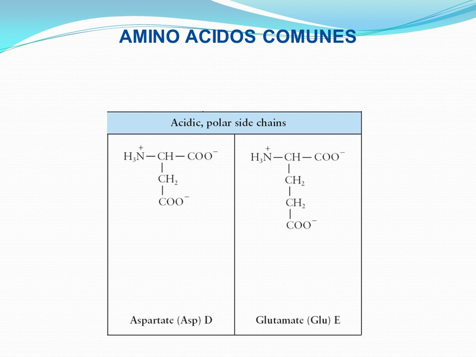 AMINO ACIDOS COMUNES