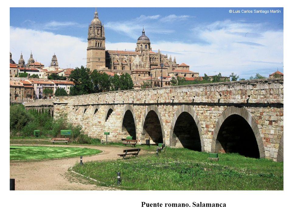Puente romano. Salamanca