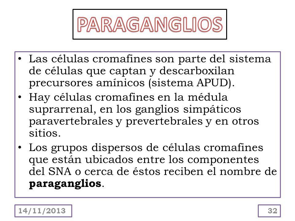 PARAGANGLIOSLas células cromafines son parte del sistema de células que captan y descarboxilan precursores amínicos (sistema APUD).
