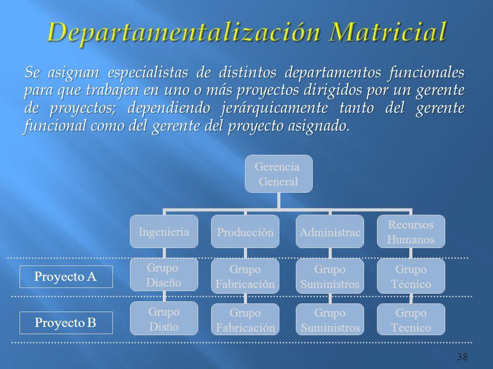 Departamentalización Matricial