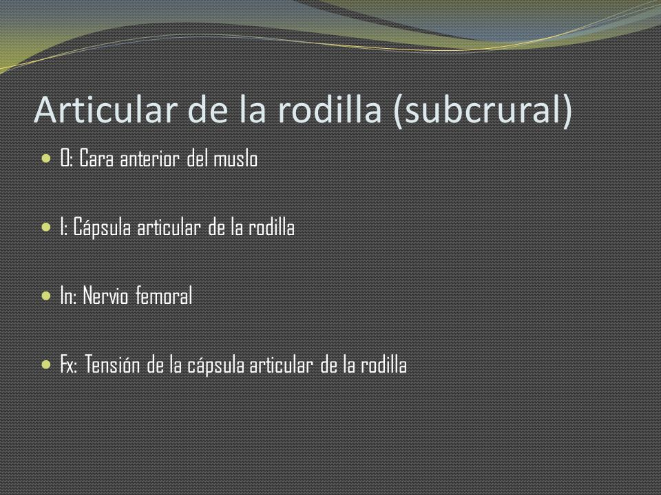 Articular de la rodilla (subcrural)