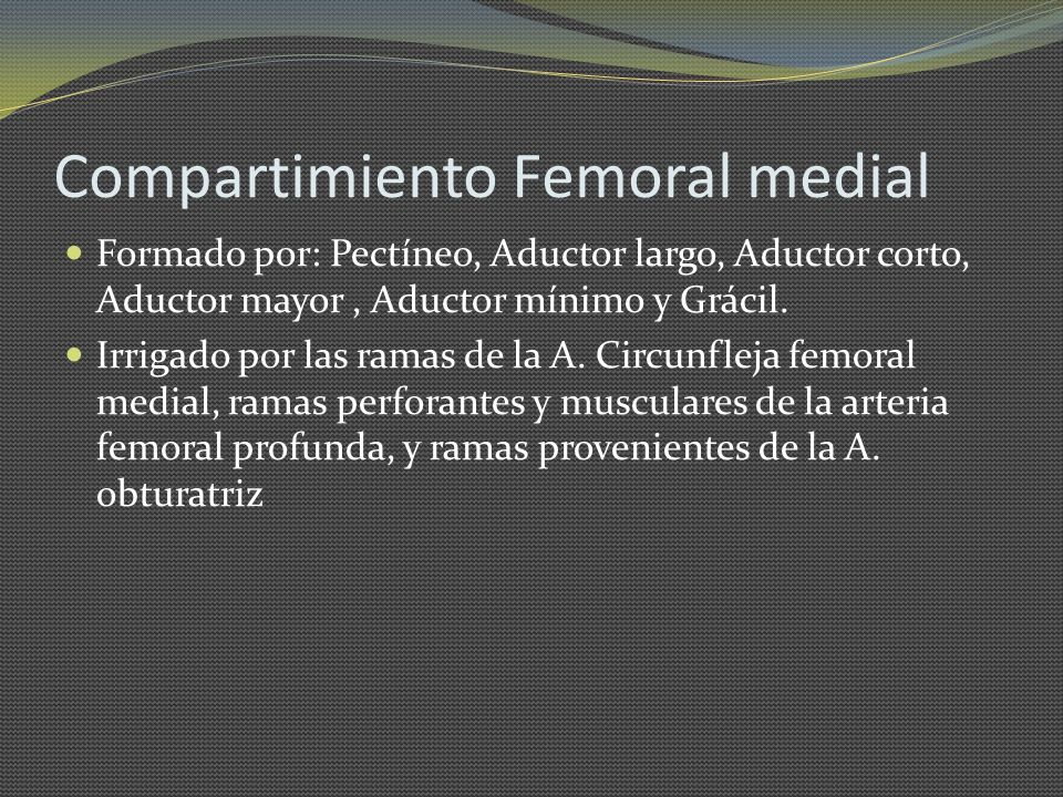 Compartimiento Femoral medial