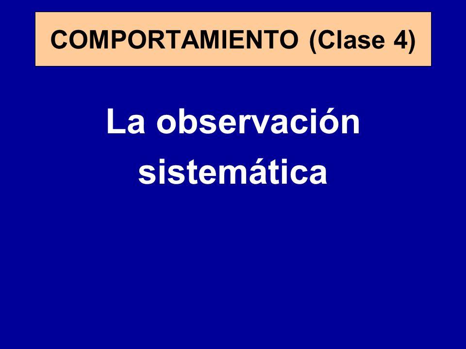 COMPORTAMIENTO (Clase 4)