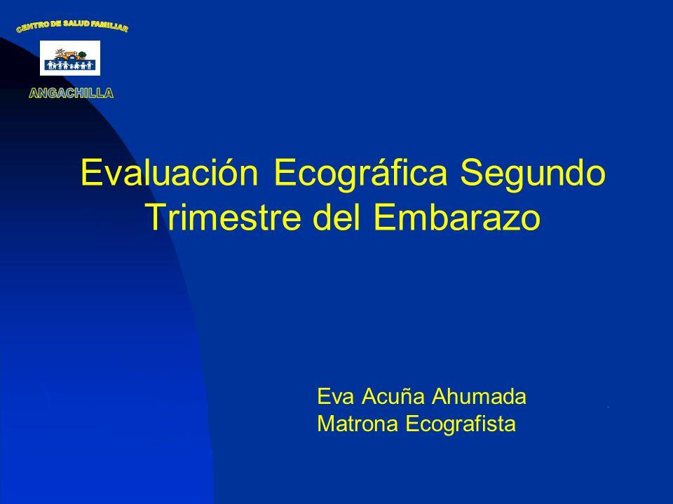 Evaluación Ecográfica Segundo Trimestre del Embarazo