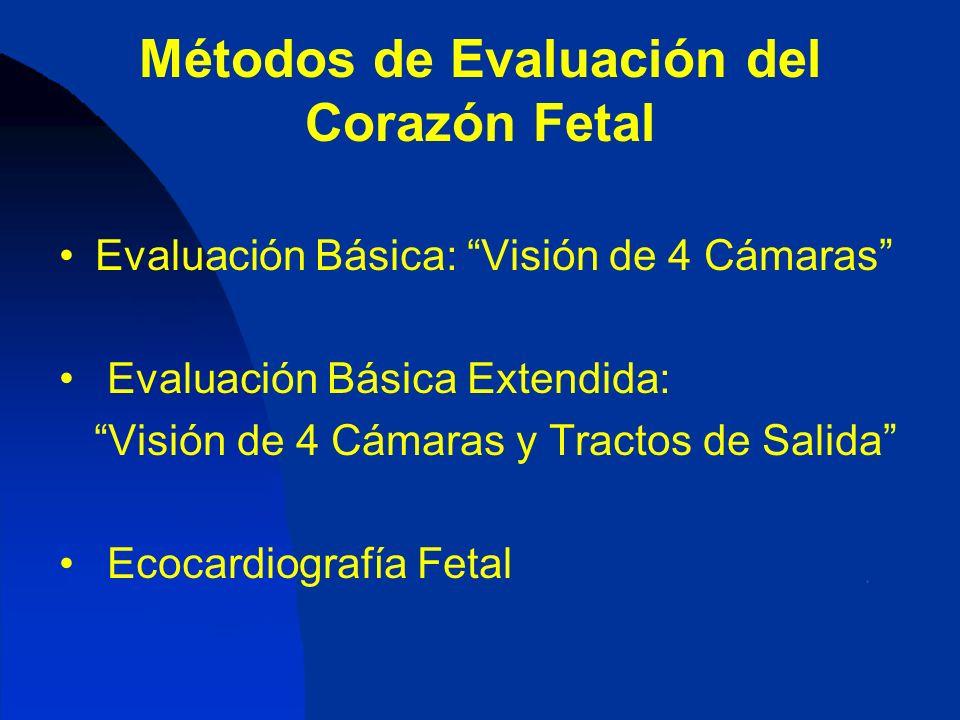 Métodos de Evaluación del Corazón Fetal