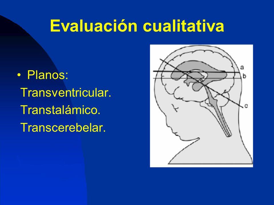 Evaluación cualitativa