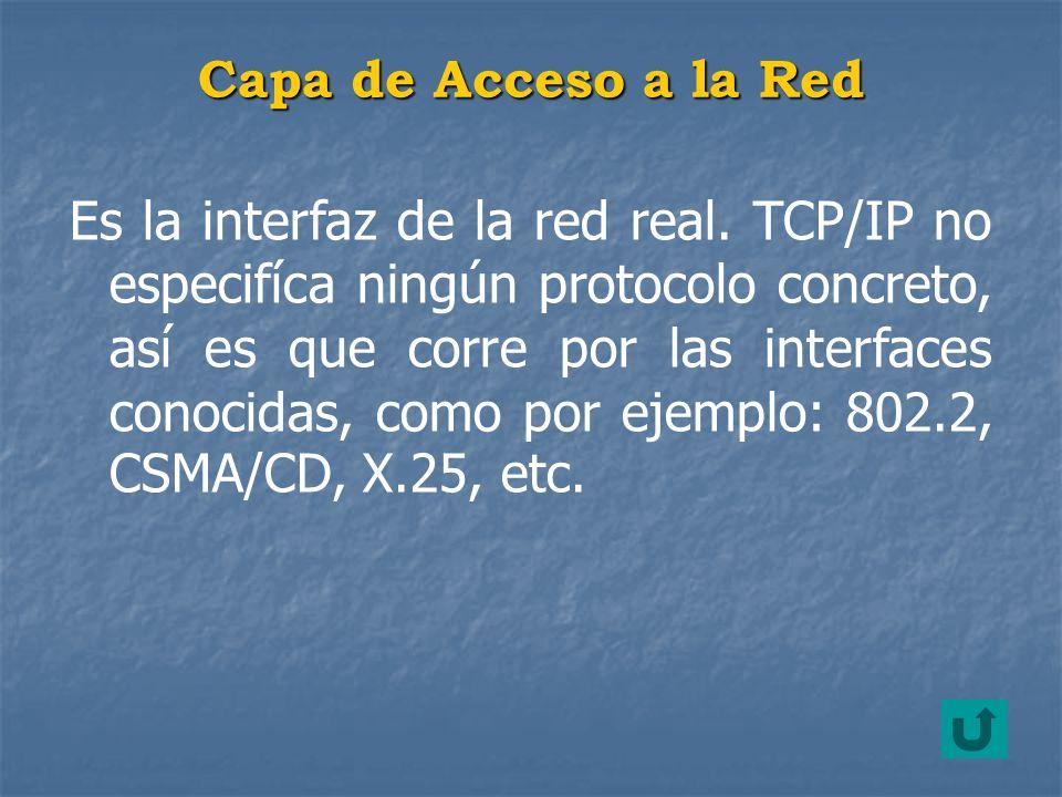 Capa de Acceso a la Red