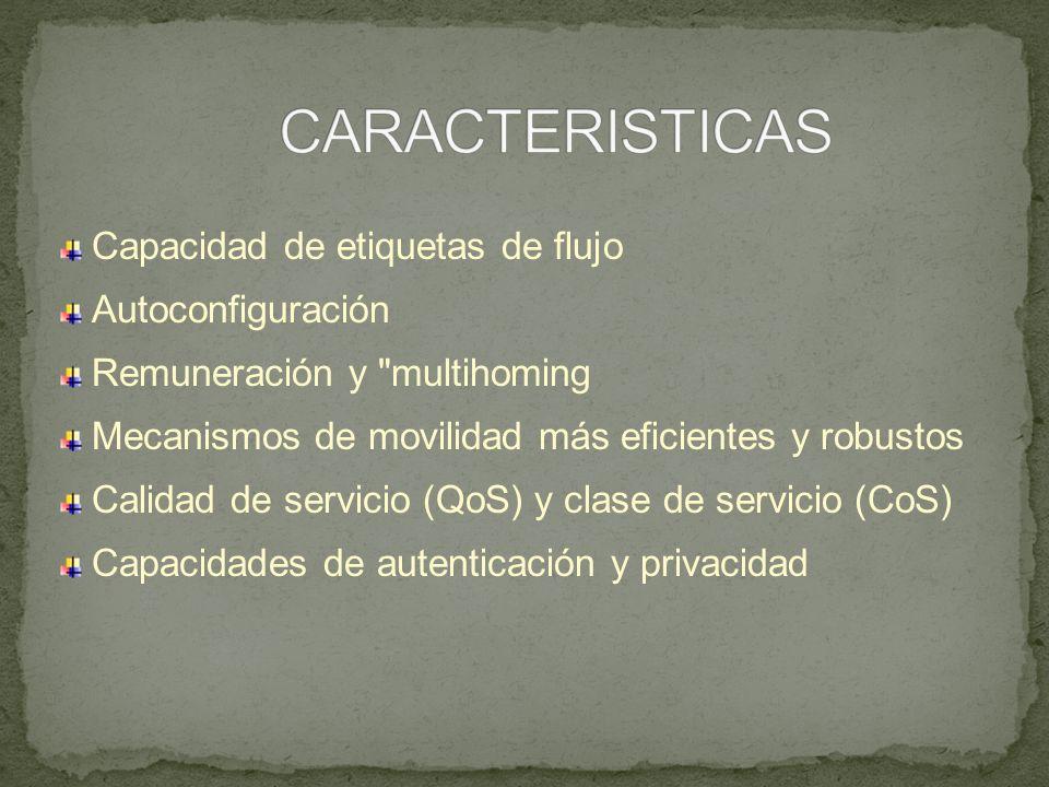 CARACTERISTICAS Capacidad de etiquetas de flujo Autoconfiguración