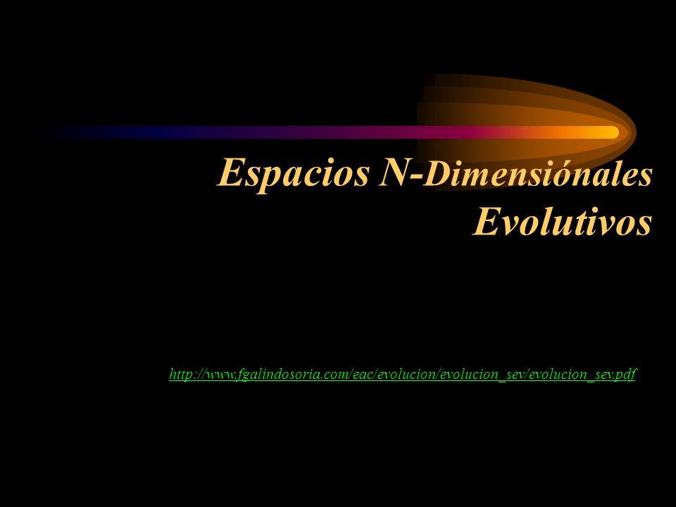 Espacios N-Dimensiónales Evolutivos