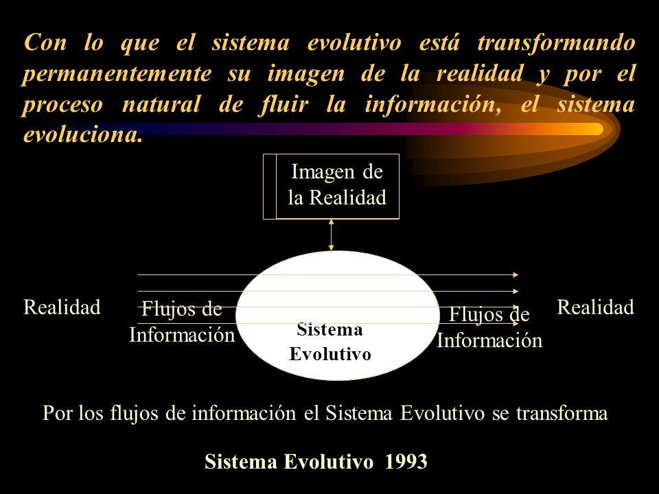 Con lo que el sistema evolutivo está transformando permanentemente su imagen de la realidad y por el proceso natural de fluir la información, el sistema evoluciona.
