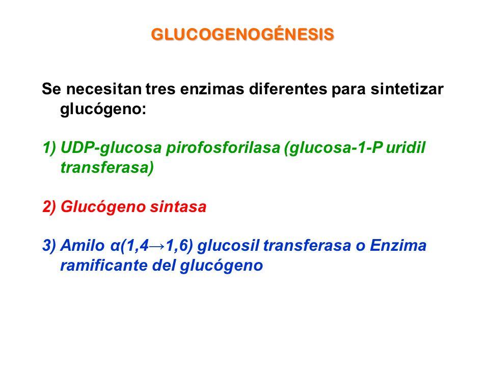 Se necesitan tres enzimas diferentes para sintetizar glucógeno: