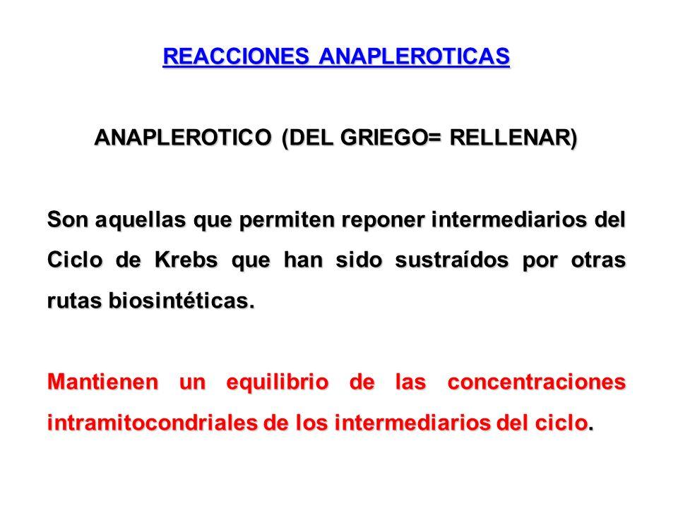 REACCIONES ANAPLEROTICAS ANAPLEROTICO (DEL GRIEGO= RELLENAR)