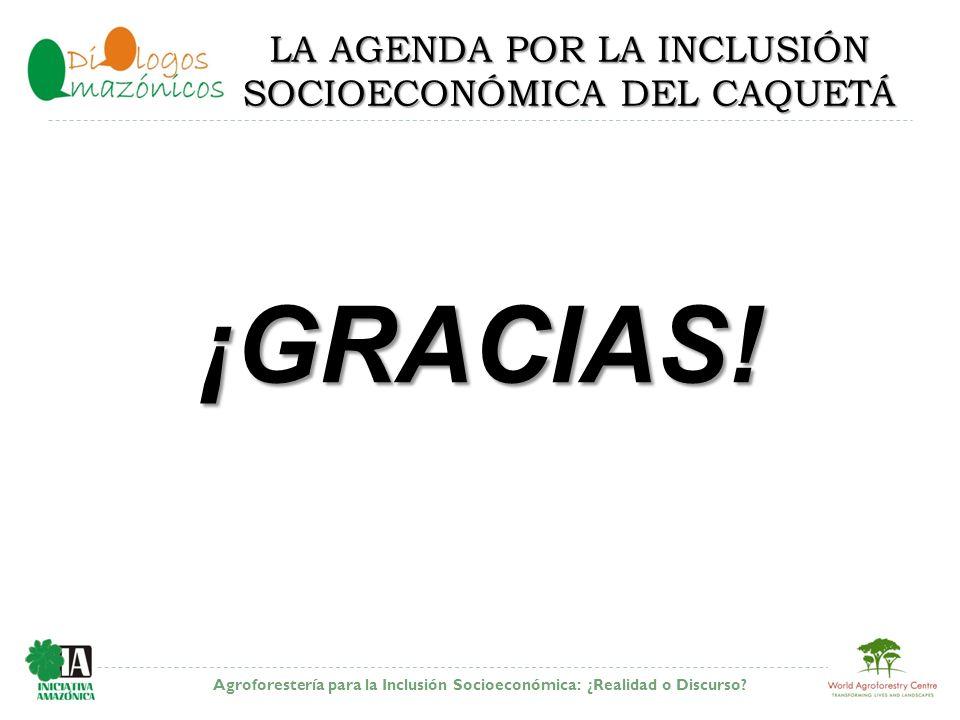 Agroforestería para la Inclusión Socioeconómica: ¿Realidad o Discurso