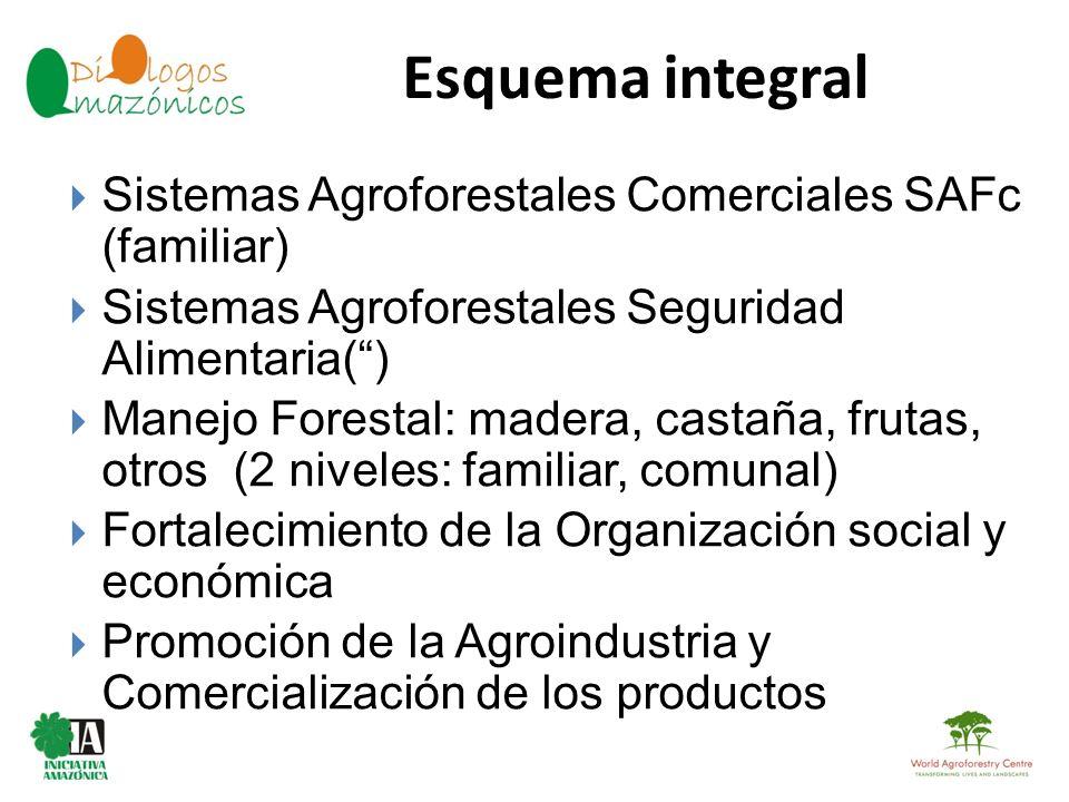 Esquema integral Sistemas Agroforestales Comerciales SAFc (familiar)