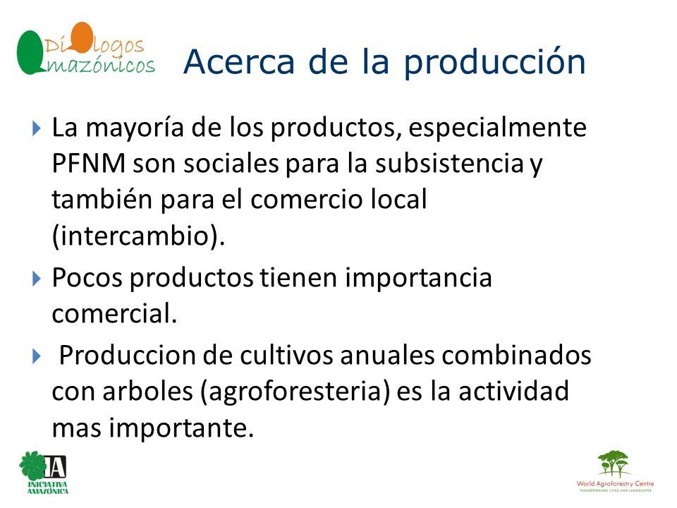 Acerca de la producción