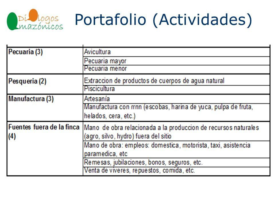 Portafolio (Actividades)