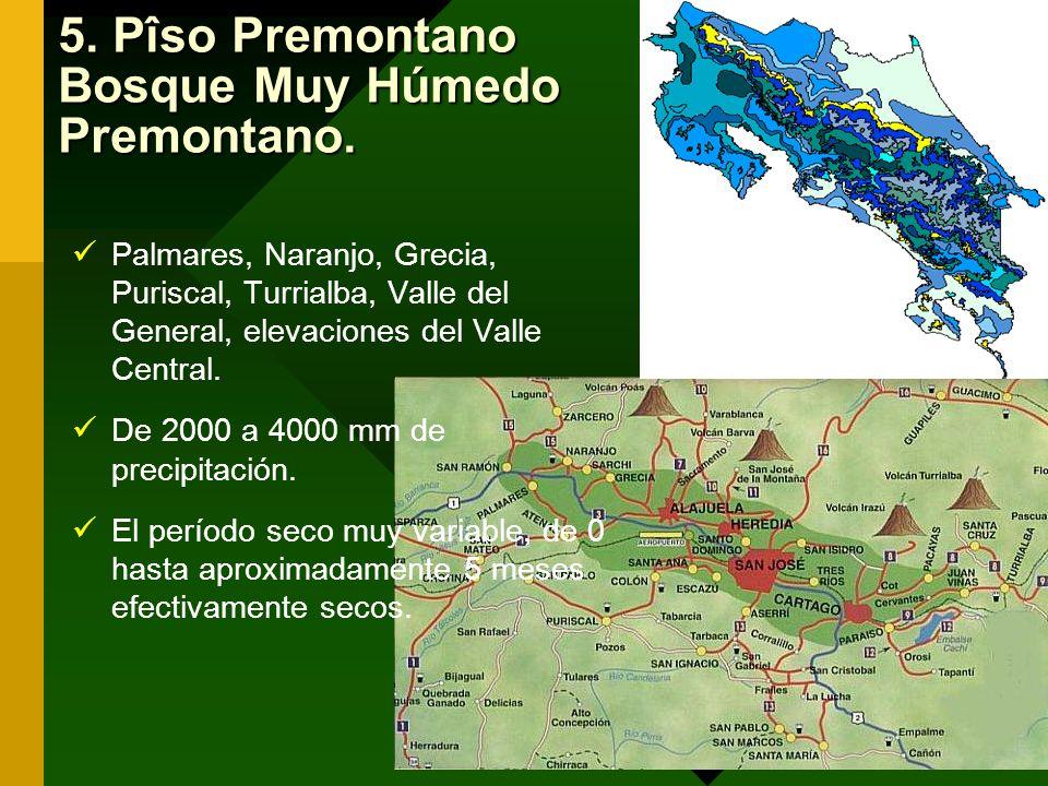 5. Pîso Premontano Bosque Muy Húmedo Premontano.