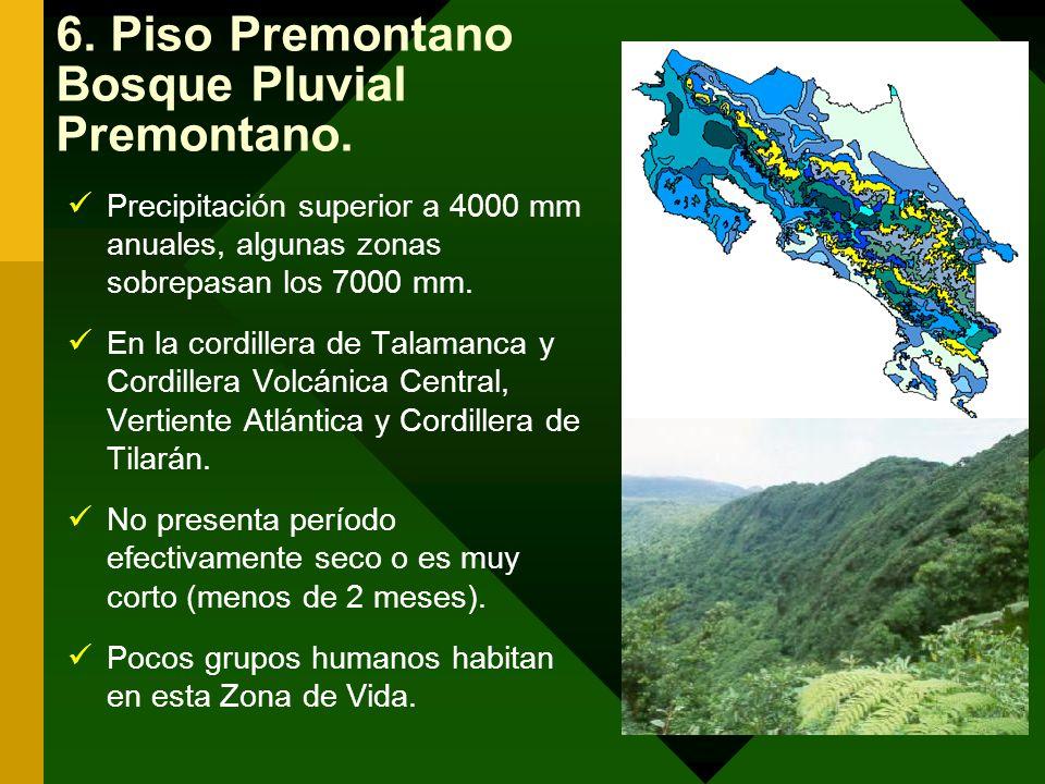 6. Piso Premontano Bosque Pluvial Premontano.