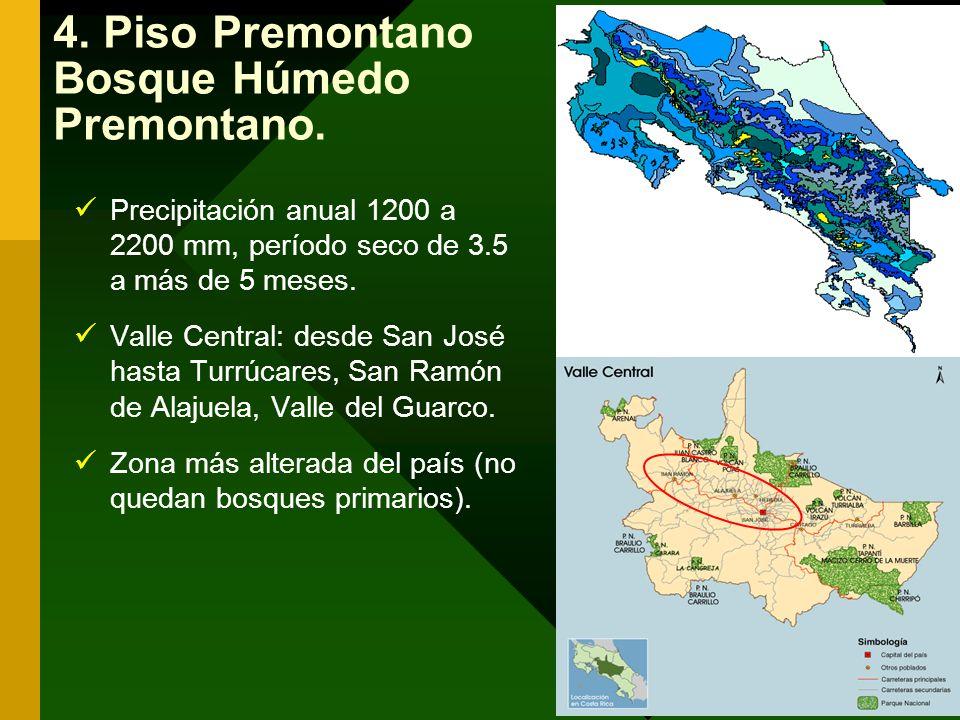 4. Piso Premontano Bosque Húmedo Premontano.