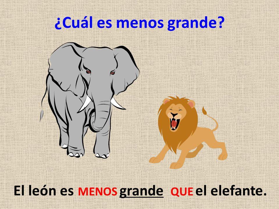 El león es grande el elefante.