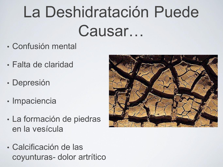 La Deshidratación Puede Causar…