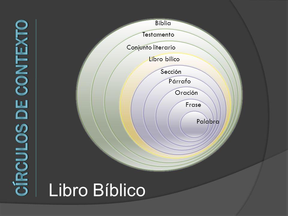 Libro Bíblico Círculos de Contexto Biblia Testamento