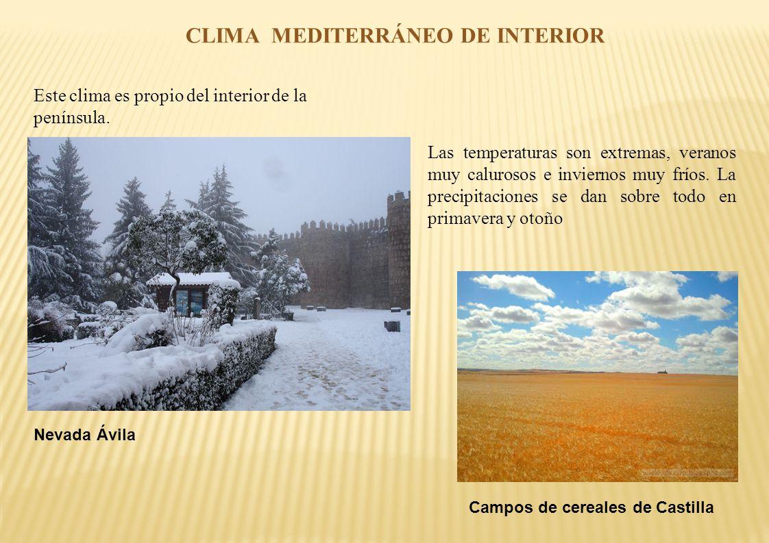 El clima de espa a rebeca del r o ppt descargar for Clima mediterraneo de interior