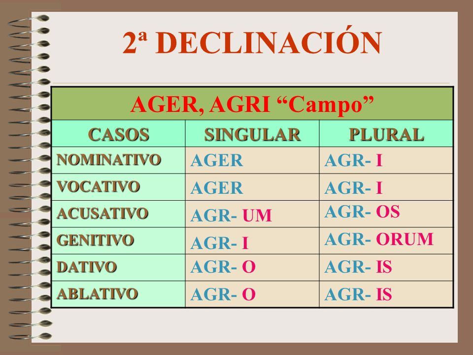 2ª DECLINACIÓN AGER, AGRI Campo CASOS SINGULAR PLURAL AGER AGR- I